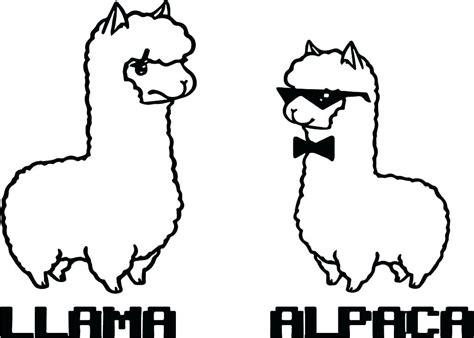 llama  alpaca animal coloring page