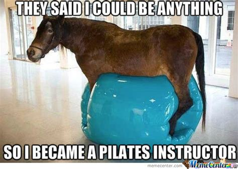 Horse Meme - plus size exercise diary the dark side of pilates fat chic