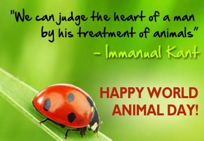 Essay On World Animal Welfare Day by 55 Best World Animal Day Greeting Pictures And Photos