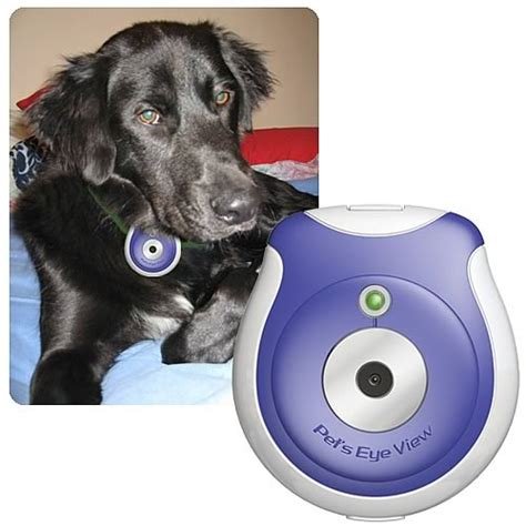 gadgets for pets pet technology gadgets and apps for animal lovers