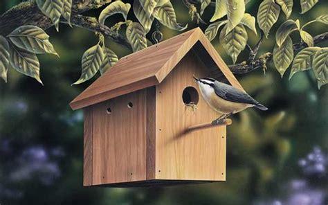 Chickadee Bird House Plans Chickadee Bird House Www Pixshark Images Galleries With A Bite