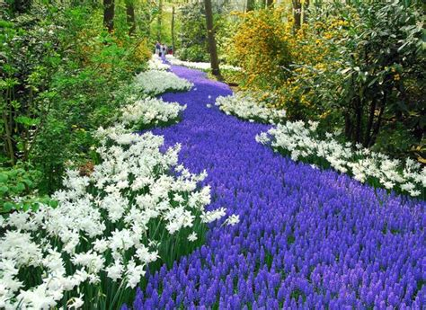 spring landscaping tips colorful spring flowers and yard landscaping ideas