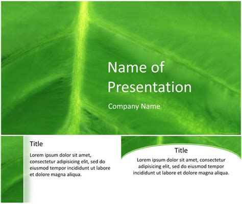 templateswise powerpoint 17 best images about nature powerpoint templates on
