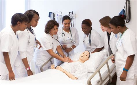Nursing Course - licensed practical nursing lpn certification school in