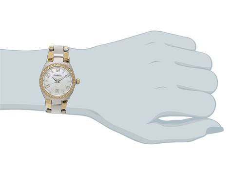 Fossil Colleague Three Am4183 fossil am4183 quartz two tone zappos free