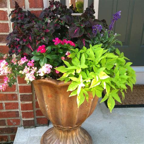 large flower pot my garden pinterest the o jays porches and flower pots