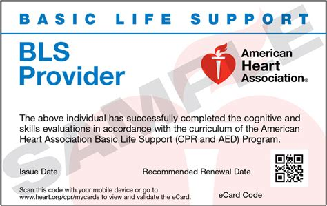 american association healthcare provider cpr card template bls classes aha cpr classes and aha