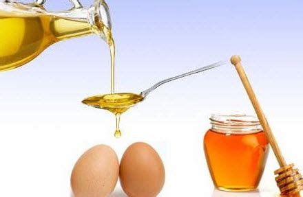 maska za masnu kosu sa maslinovim uljem maska za kosu od jaja limuna maslinovog ulja meda
