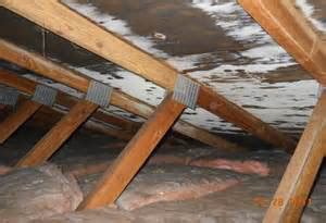 island attics mold in attics why should i care and what to do