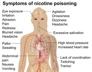 Is Backpain A Common Detox Symptom by Safety Of Electronic Cigarettes