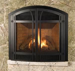 gas fireplace door fireplace stove world