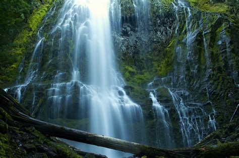 proxy falls  willamette national forest oregon flickr