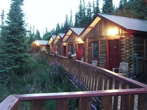 Denali Cabins Review by Denali S Nest Cabins Denali National Park And