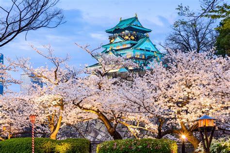 day trips  kyoto  crazy tourist