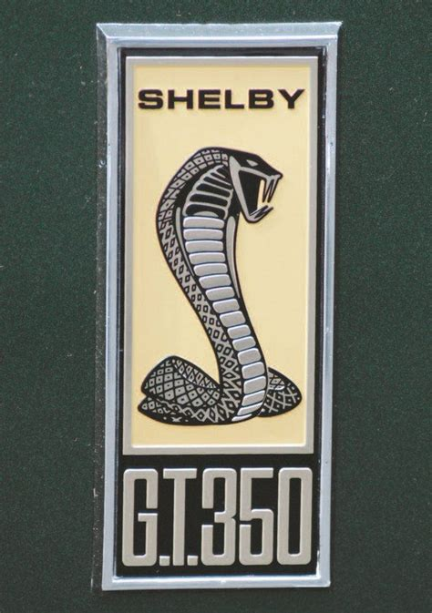 Shelby Mustang History 1967 Gt350 Gt500 A Longer Shelby Shelby Lettering Template