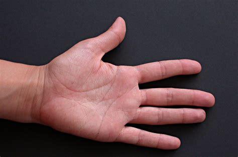 la mano sulla ejercicio la mano aprender italiano