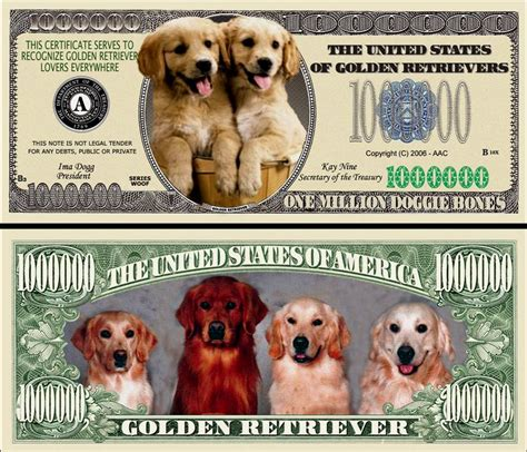 bills dogs a golden retriever dollar bill 500 bills ebay