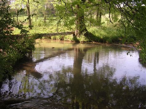 Knob Creek Tennessee by Seymour Tn Knob Creek In Seymour Photo Picture Image