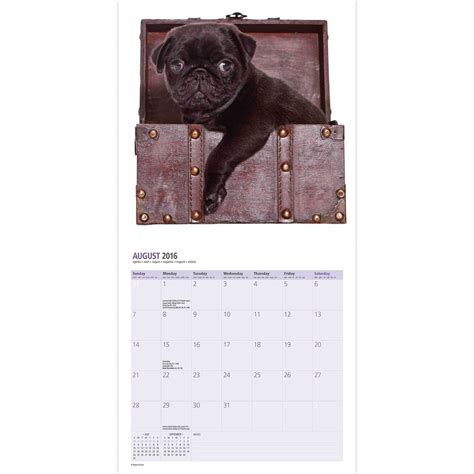 pug calendars pugs dogbreed gifts pug calendars