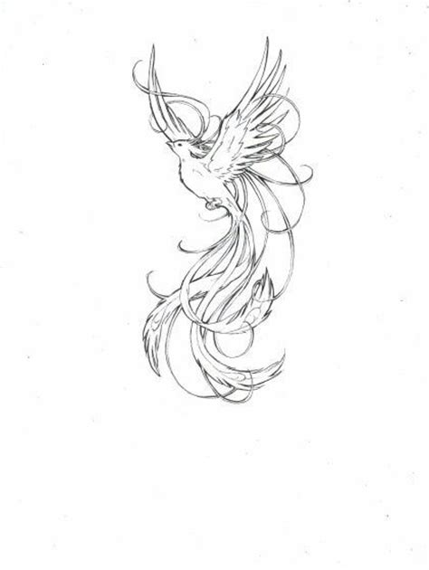 phoenix tattoo no outline grey outline flying phoenix tattoo design