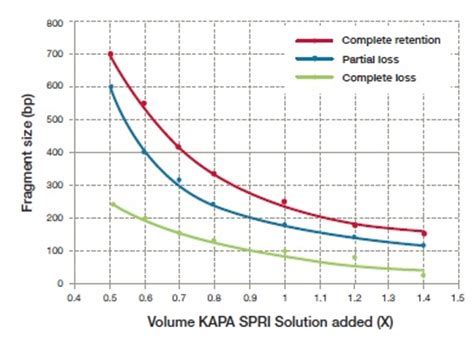 spri bead size selection spri bead size selection coregenomics how do spri work