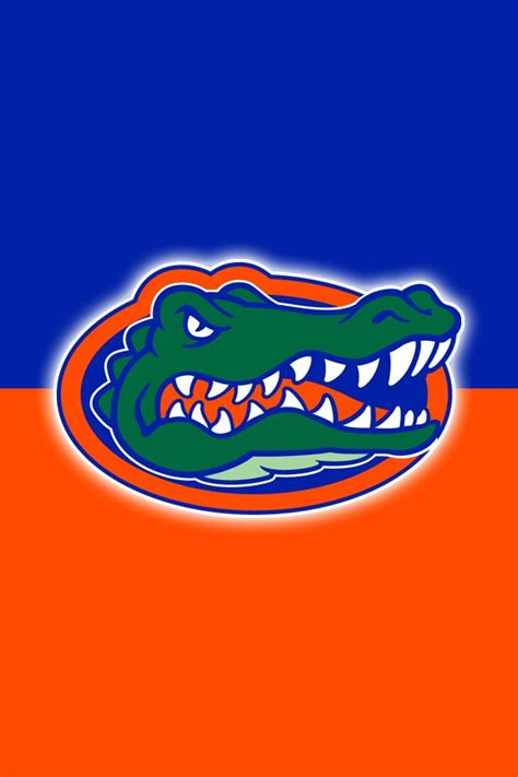 gator colors 17 best images about florida gators on logos
