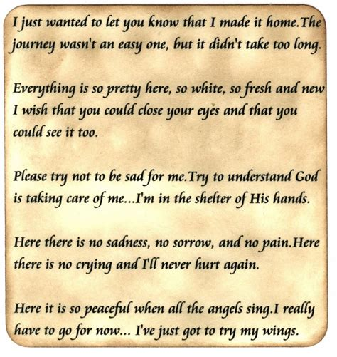 i made it home poem pet loss grief support message board