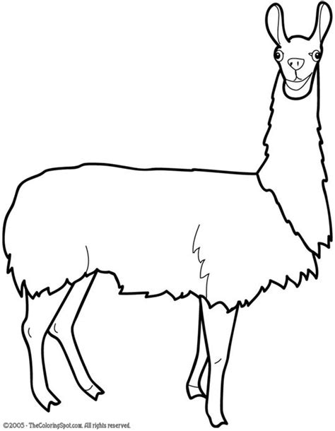 How To Draw Llama Eating Alpaca Coloring Pages