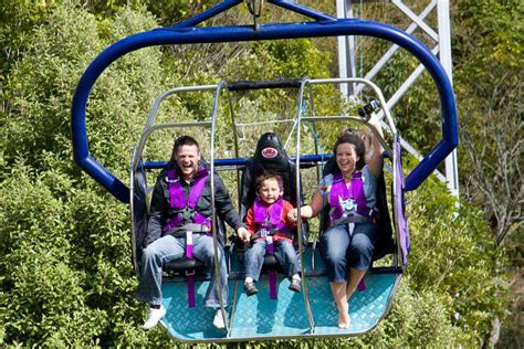 sky swing new zealand adventurers can t afford to miss the most amazing