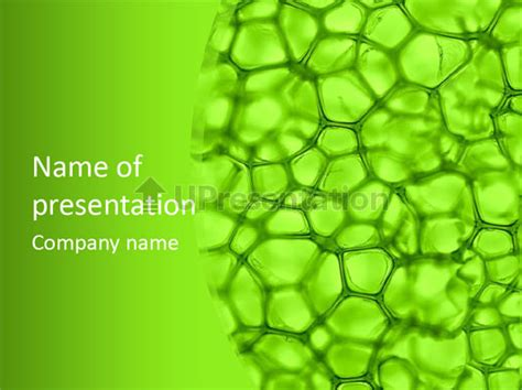 powerpoint templates for biology concept biology powerpoint template id 0000074812
