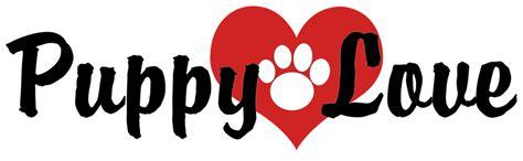 puppy lover puppy roanoke