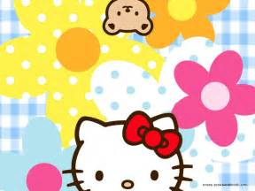 kitty kitty wallpaper 2359040 fanpop