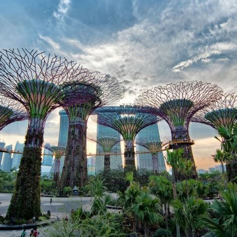 Tiket Garden By The Bay Singapore gardens by the bay singapore e ticket book pay