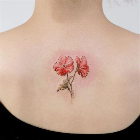 geranium tattoo designs 20 best geranium images on geranium