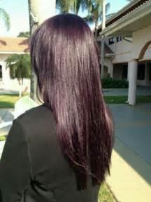 eggplant hair color eggplant colored hair brown hairs