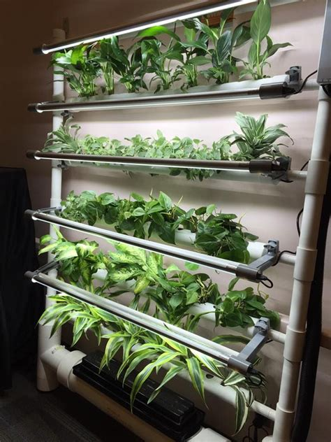indoor hydroponic wall garden 25 best ideas about indoor hydroponics on pinterest
