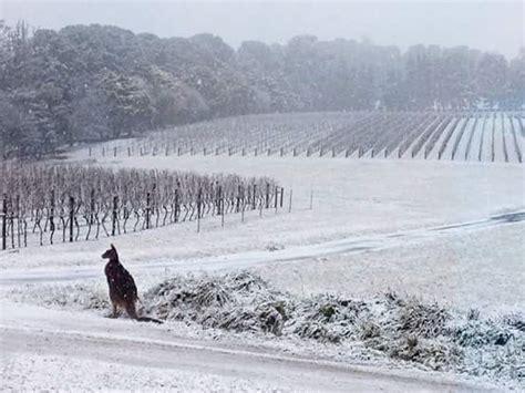 when is in australia it is winter in australia