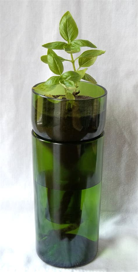 green vinoponic planter re purposed wine bottle self