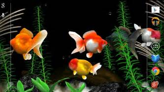 Gold Fish 3D Live Wallpaper   Android Apps on Google Play