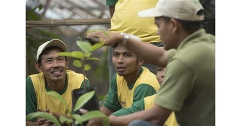 coco indonesia release cocoa life empowers cocoa farmers and communities in