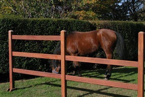 recinti in legno per giardini recinzioni in legno recinzioni recinzioni legno