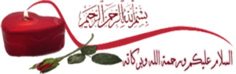 Buku Istri Istri Nabi Yang Suci ba alwy sayyidah aisyah adalah wanita suci