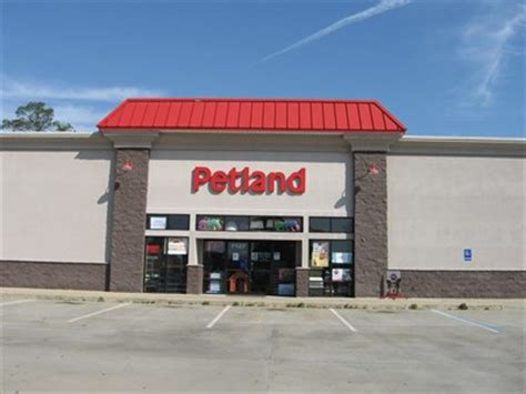 petland montgomery alabama pet stores on waymarking com