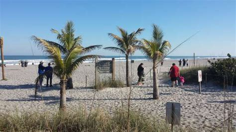 Brevard County Schools Calendar 2015 16 Brevard County Is Looking To Hire More Lifeguards Local