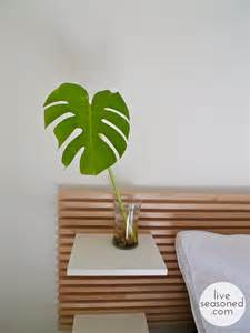 Houseplants Splitting Up With My Split Leaf Philodendron