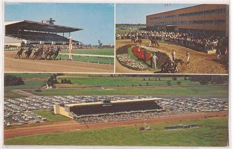 Sweepstakes Postmarked - 17 best images about horse racing postcards on pinterest parks horse racing and miami