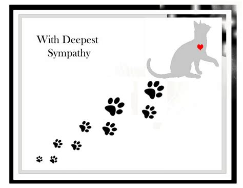 Deepest Sympathy Card Template by Pet Memorial Cat Sympathy Card Pet Sympathy Card Sorry For