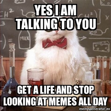 I Get It Meme - meme chemistry cat yes i am talking to you get a life