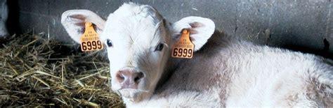 chambre r馮ionale d agriculture pays de la loire identification des animaux ipg agriculture pays de la