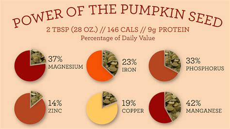 10 Health Benefits of Pumpkin Seeds   Pinch of Health